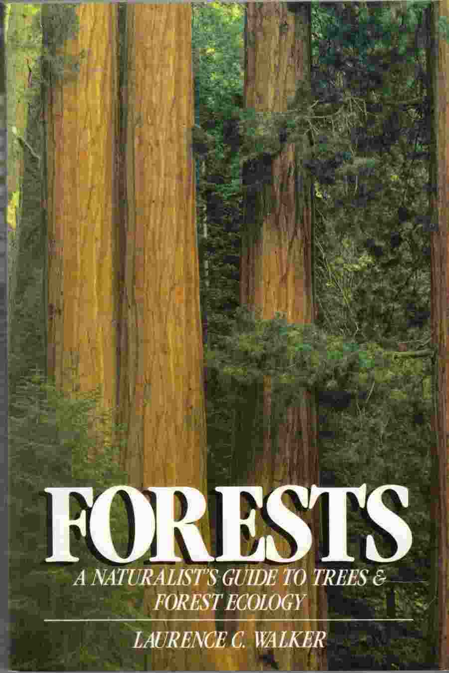 Image for Forests A Naturalist's Guide to Trees and Forest Ecology