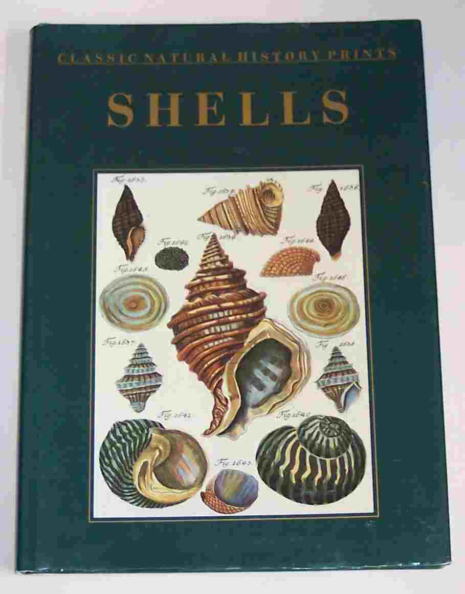 Image for Classic Natural History Prints: Shells