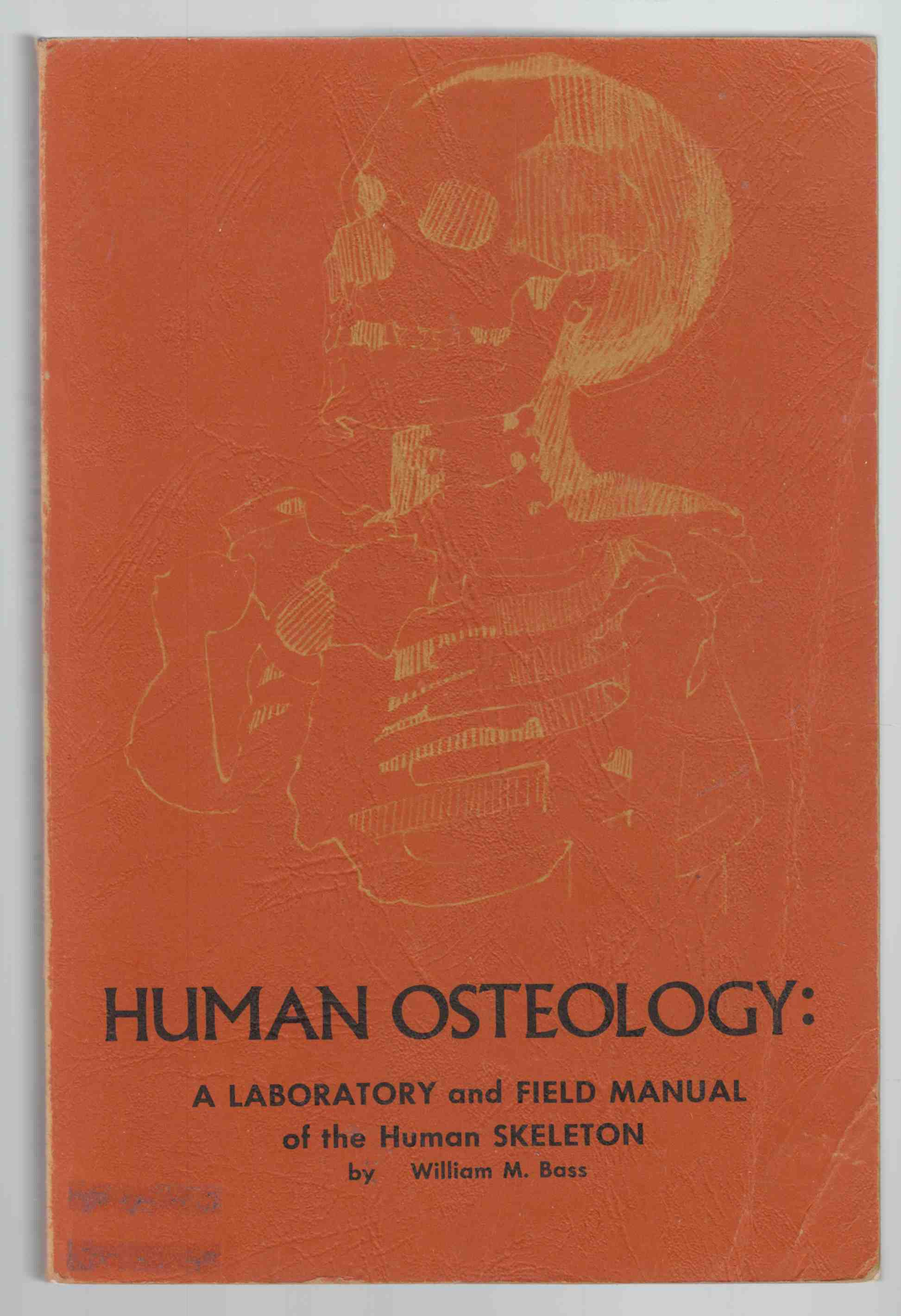 Image for Human Osteology:  A Laboratory and Field Manual of the Skeleton