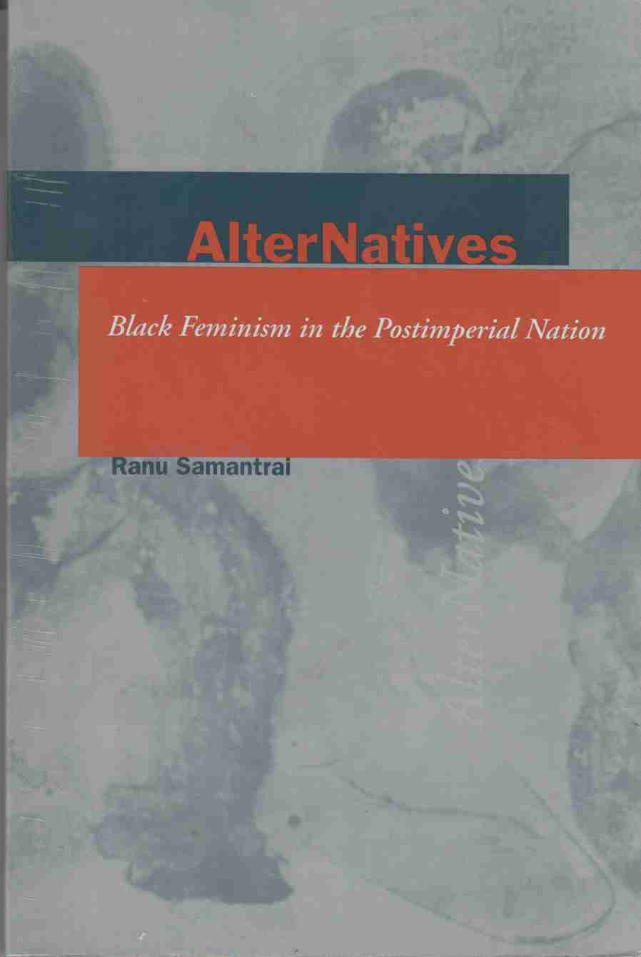 Image for AlterNatives Black Feminism in the Postimperial Nation