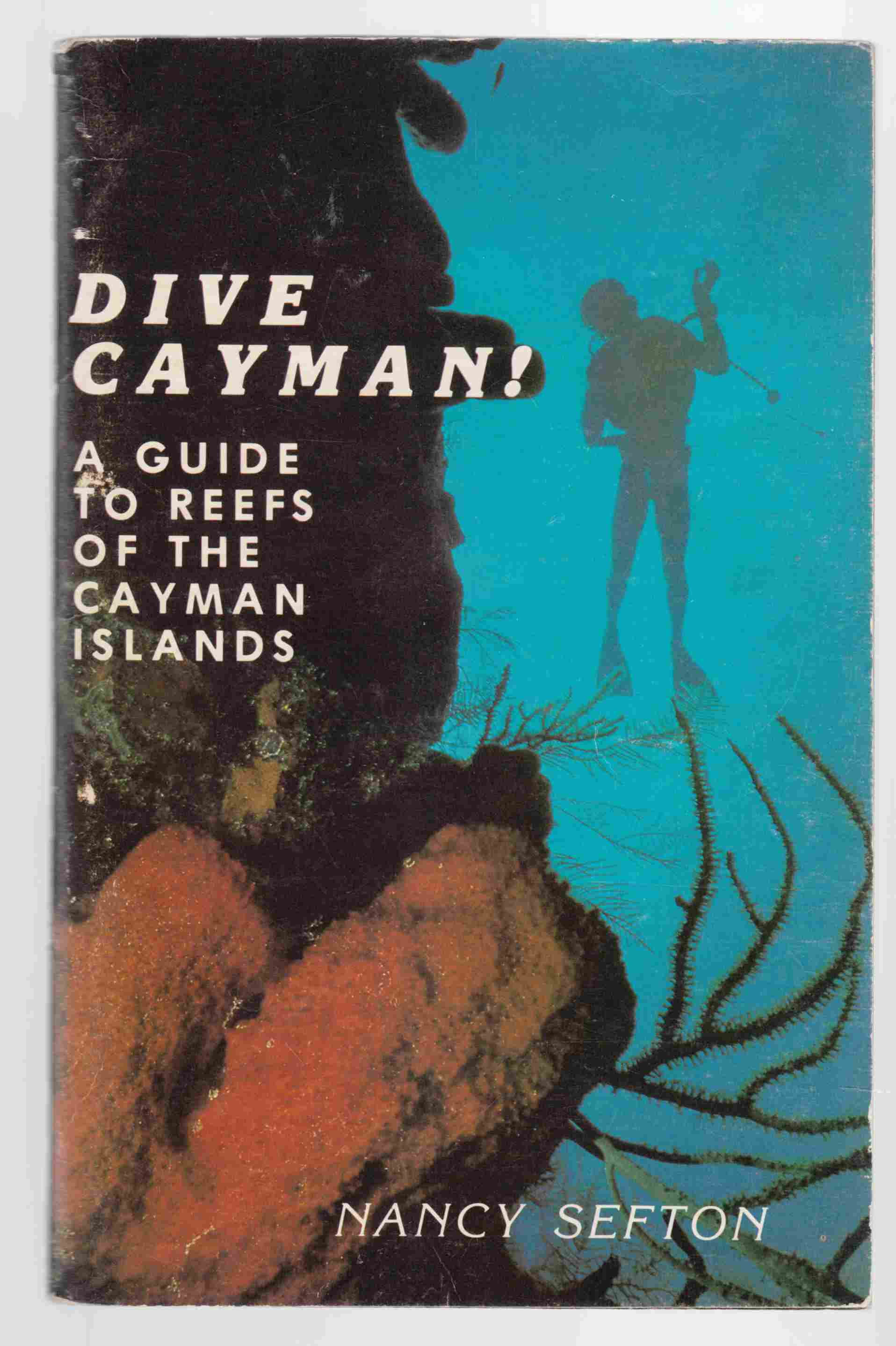 Image for Dive Cayman! A Guide to the Reefs of the Cayman Islands