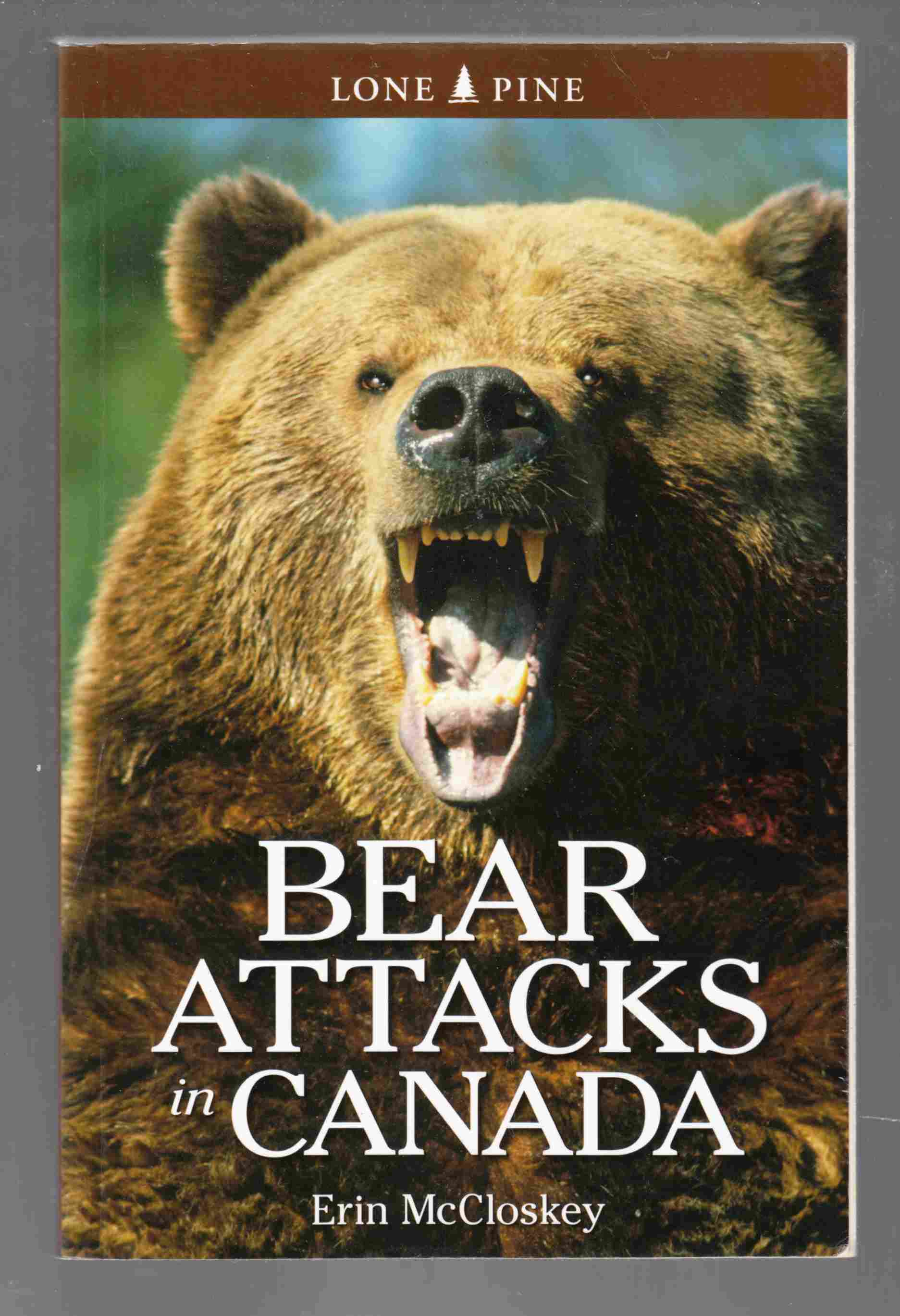 Image for Bear Attacks in Canada